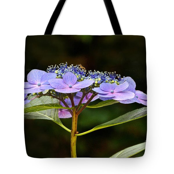 Blue Wave Lacecap And Guest Tote Bag by Byron Varvarigos