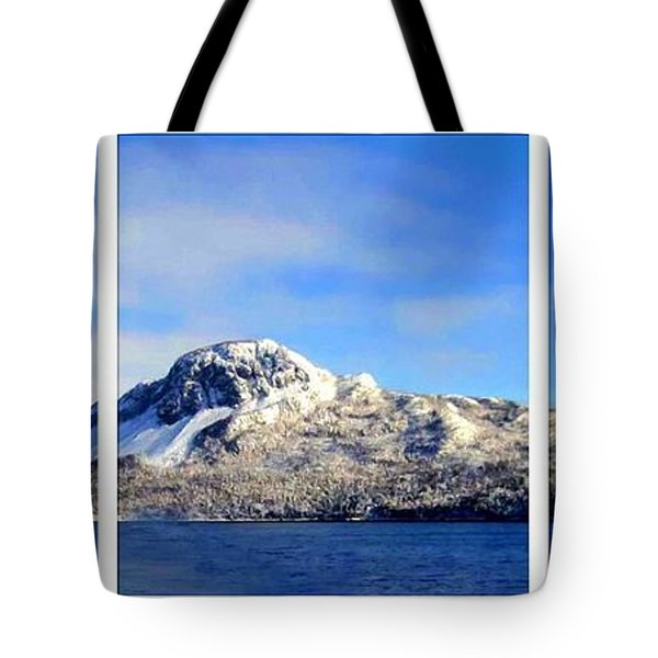 Blue Winter Triptych Tote Bag by Barbara Griffin
