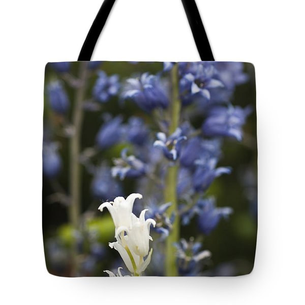 Bluebells 1 Tote Bag by Steve Purnell