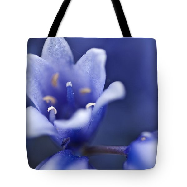 Bluebells 6 Tote Bag by Steve Purnell