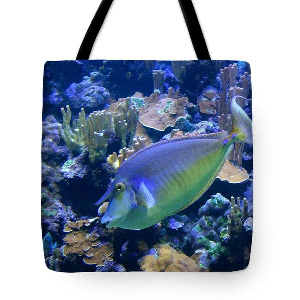 Bluespine Unicornfish Tote Bag by Karon Melillo DeVega