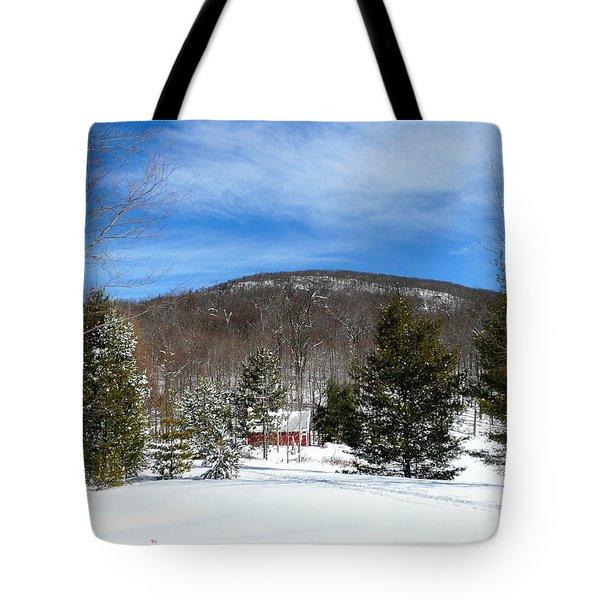 Boathouse In Winter Tote Bag by Avis  Noelle
