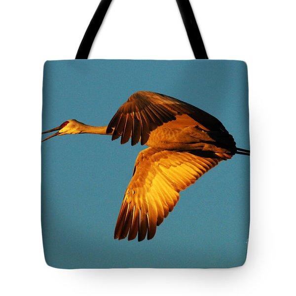Bosque Del Apache Sandhill Crane Golden Light Tote Bag by Bob Christopher
