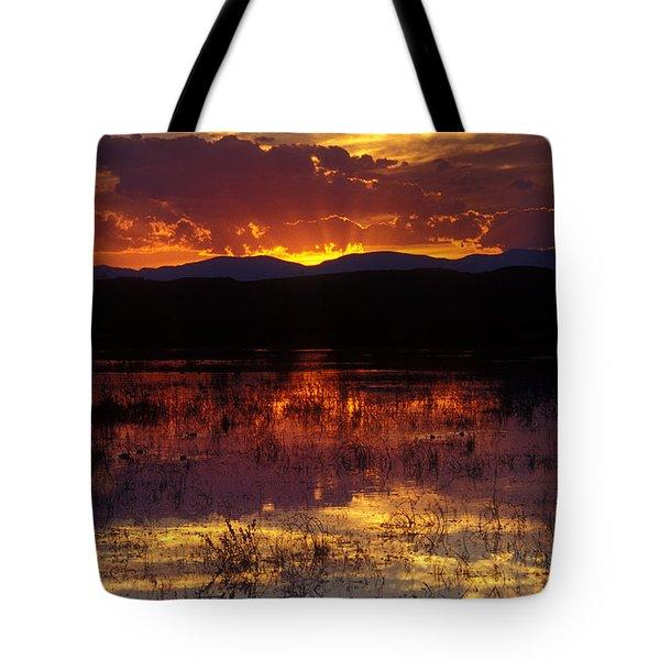 Bosque Sunset - Orange Tote Bag by Steven Ralser