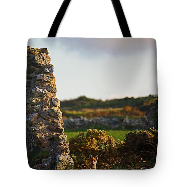 Botallack Fox At Sunset Tote Bag by Terri Waters