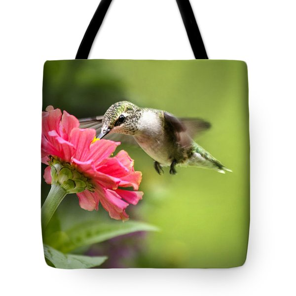 Botanical Hummingbird Tote Bag by Christina Rollo