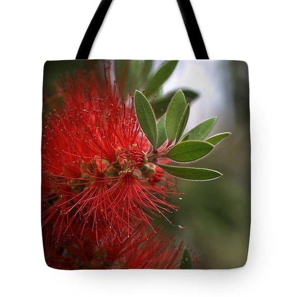 Bottlebrush In Red Tote Bag by Joy Watson