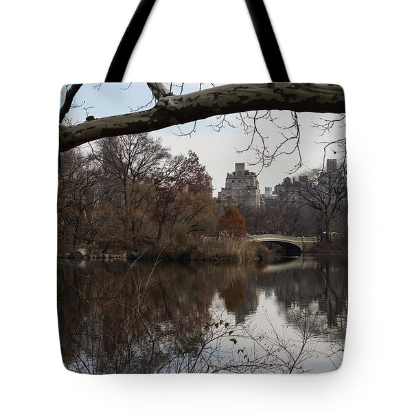 Bows And Arches - New York City Central Park Tote Bag by Georgia Mizuleva