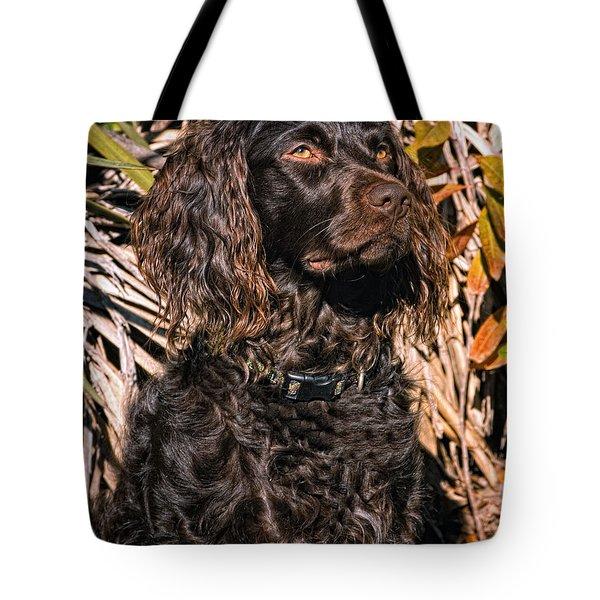 Boykin Spaniel Portrait Tote Bag by Timothy Flanigan