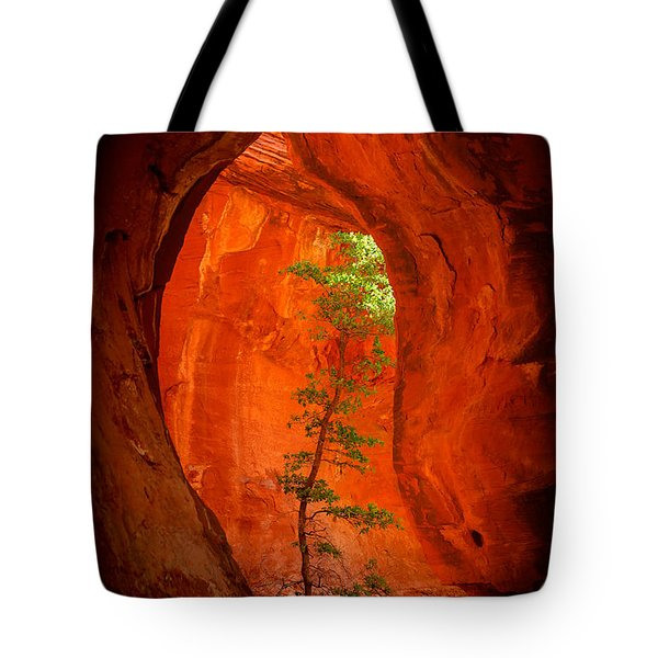 Boynton Canyon 04-343 Tote Bag by Scott McAllister