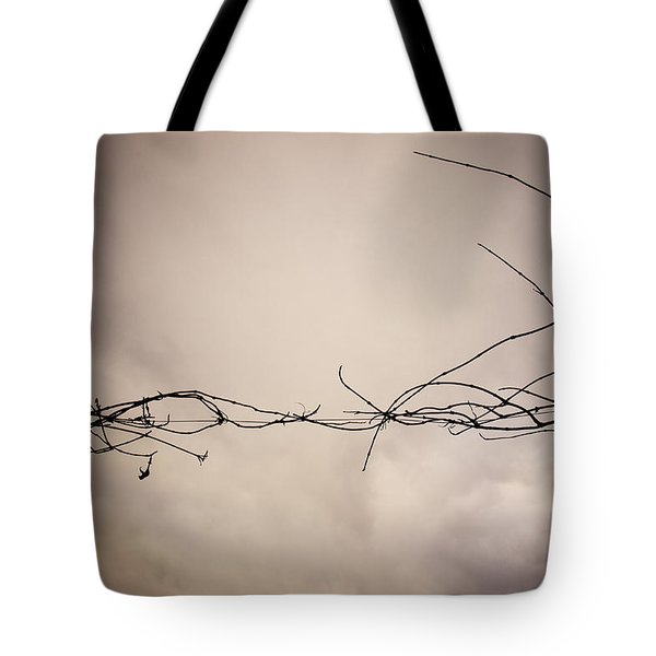 Branches Against A Winter Sky Tote Bag by Vivienne Gucwa