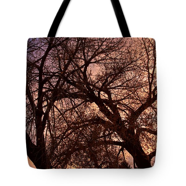 Branching Out At Sunset Tote Bag by James BO  Insogna