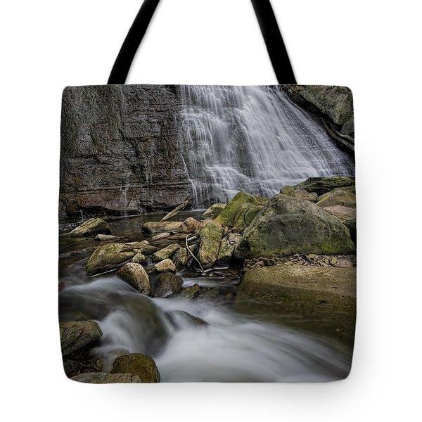 Brandywine Flow Tote Bag by James Dean