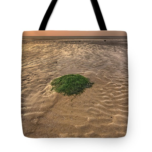 Breeze Of Dawn Tote Bag by Evelina Kremsdorf