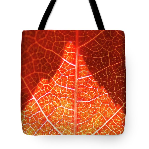 Bright And Dark Tote Bag by Heiko Koehrer-Wagner