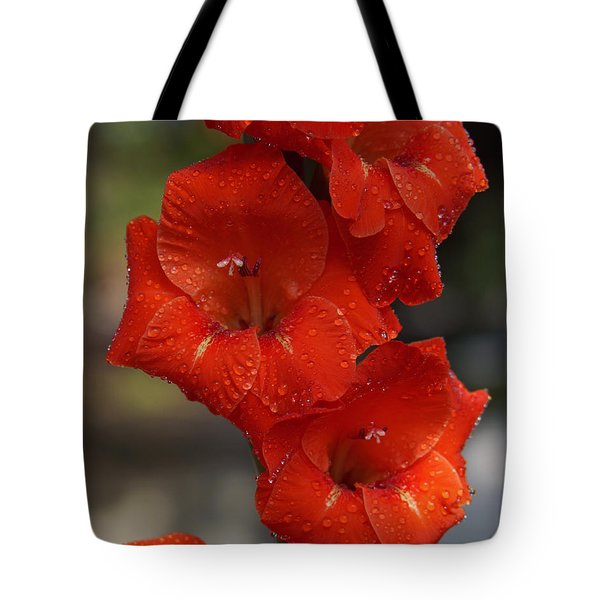 Bright Glad Tote Bag by Kim Pate