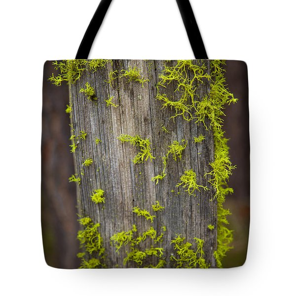 Bright Green Lace Tote Bag by Omaste Witkowski
