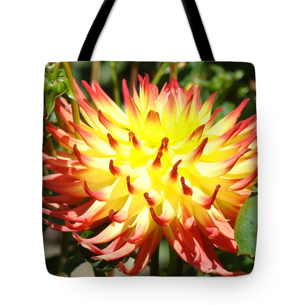 Bright Red Yellow Dahlia Flower Art Print Tote Bag by Baslee Troutman