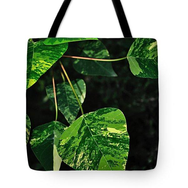 Bright Variegated Leaves Tote Bag by Kaye Menner