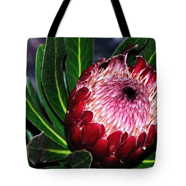 Bright'n'happy Protea Tote Bag by Kaye Menner