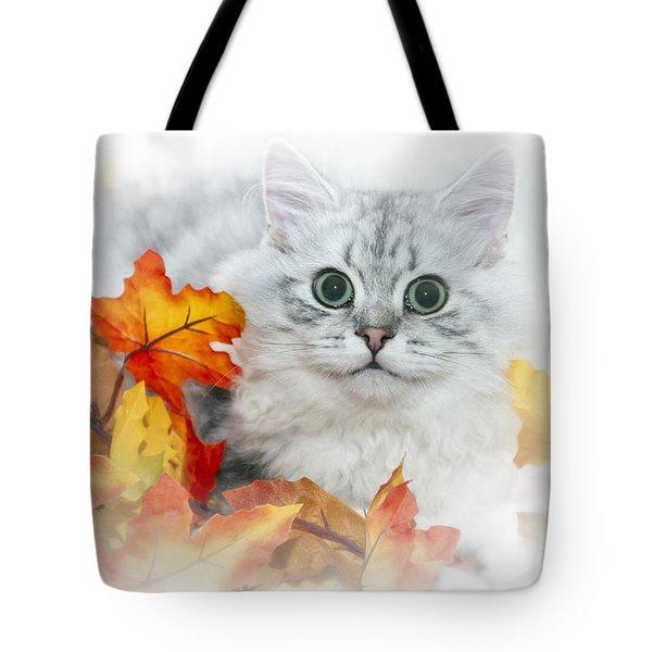 British Longhair Cat Tote Bag by Melanie Viola