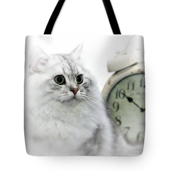 British Longhair Cat Time Goes By II Tote Bag by Melanie Viola