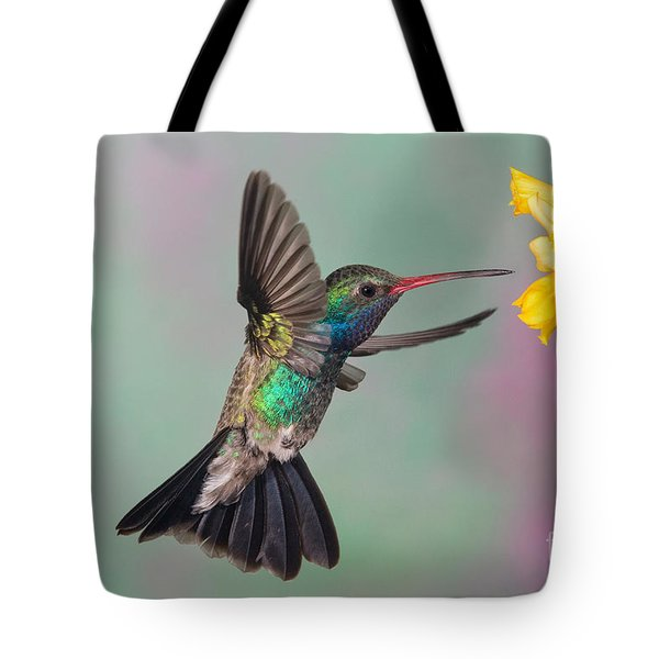 Broad-billed Hummingbird Tote Bag by Jim Zipp