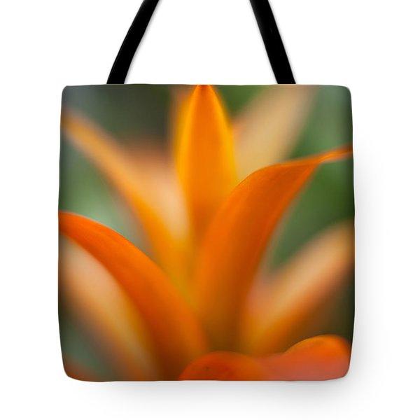 Bromeliad Flow Tote Bag by Mike Reid