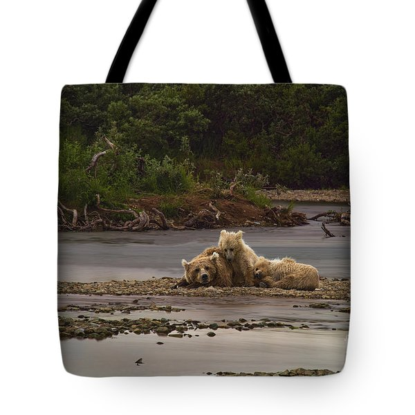 Brown Bear And Cubs Taking A Break From Fishing For Salmon Tote Bag by Dan Friend