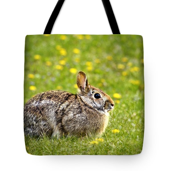 Brown Bunny In Green Grass Tote Bag by Christina Rollo