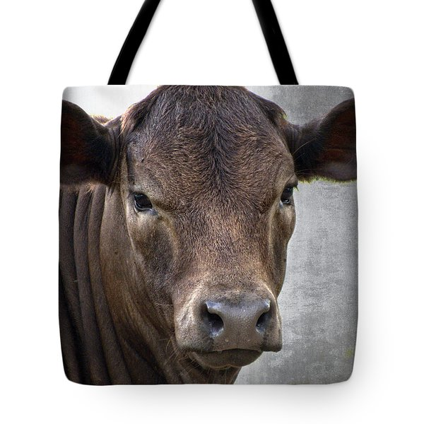 Brown Eyed Boy - Calf Portrait Tote Bag by Ella Kaye Dickey