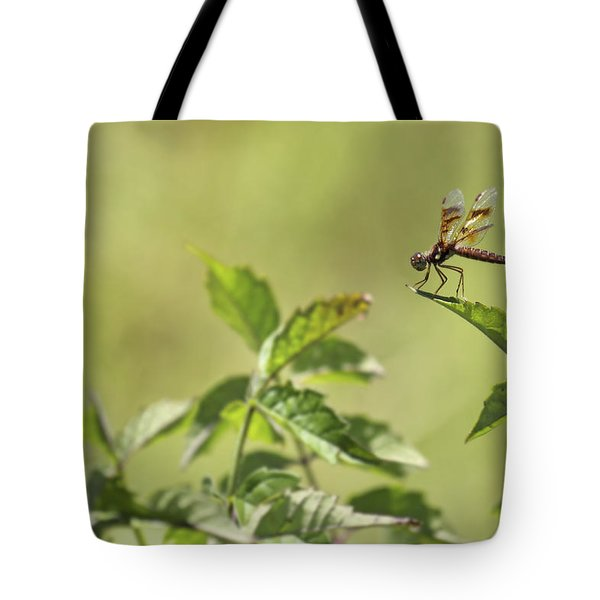 Brown Hawker Dragonfly Tote Bag by Jason Politte