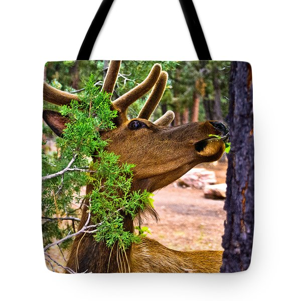 Browsing Red Deer In The Grand Canyon Tote Bag by Bob and Nadine Johnston