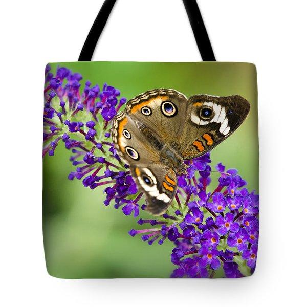 Buckeye Butterfly On Purple Flowers Tote Bag by Saija  Lehtonen