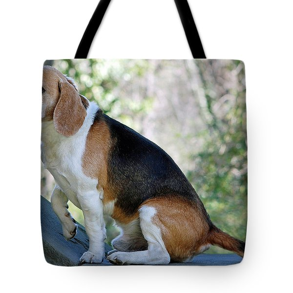 Buddy Tote Bag by Lisa Phillips