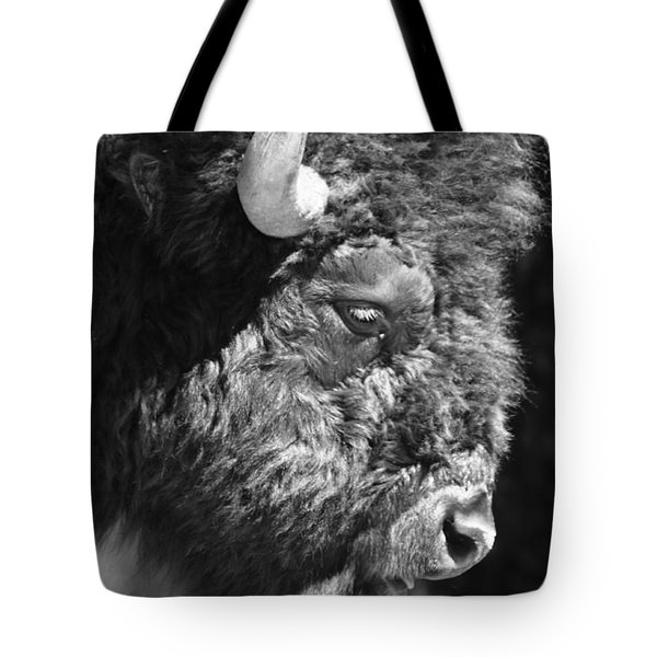 Buffalo Portrait Tote Bag by Robert Frederick