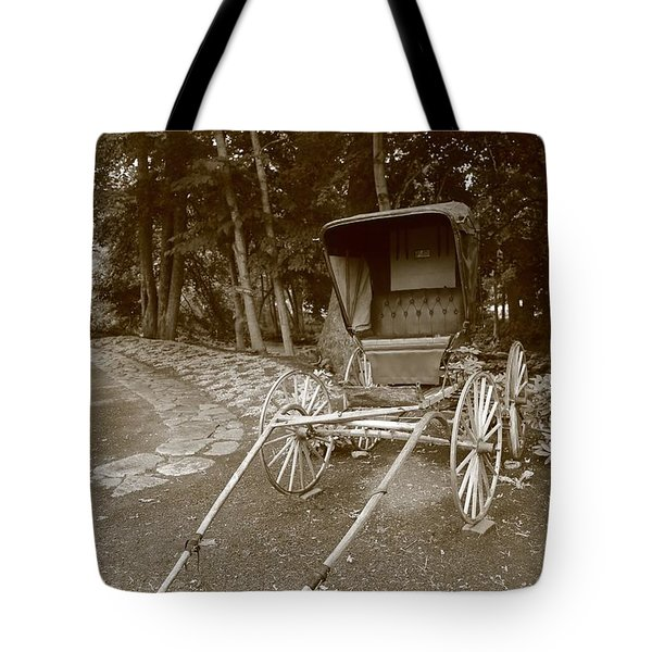 buggy Tote Bag by Dwight Cook