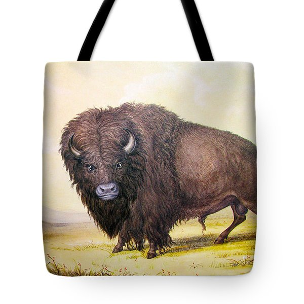Bull Buffalo Tote Bag by George Catlin