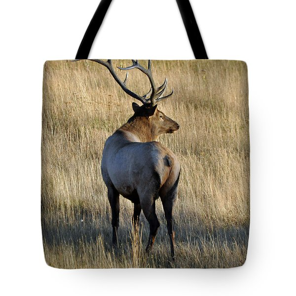 Bull Elk Surveying His Harem Tote Bag by Bruce Gourley