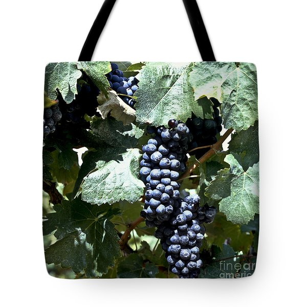 Bunch Of Grapes Tote Bag by Heiko Koehrer-Wagner