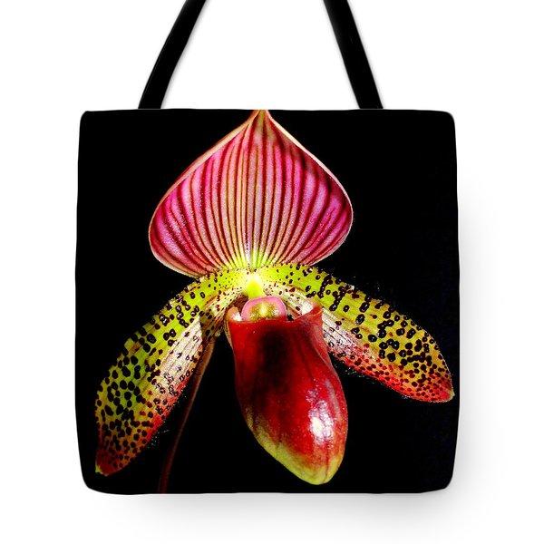 Burgundy Lady Slipper Tote Bag by Karen Wiles