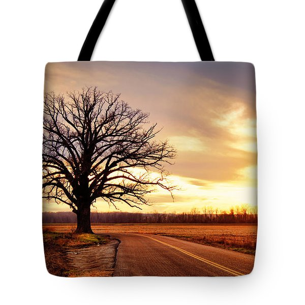 Burr Oak Silhouette Tote Bag by Cricket Hackmann