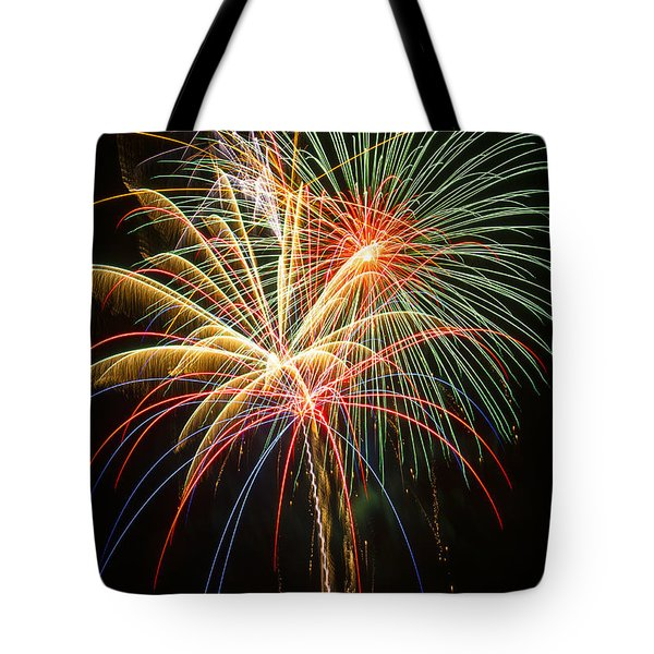 Bursting in air Tote Bag by Garry Gay