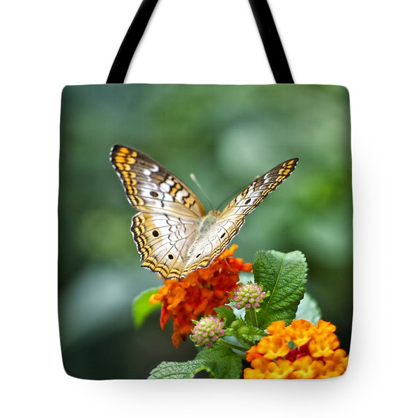 Butterfly Wings of Sun 2 Tote Bag by Thomas Woolworth