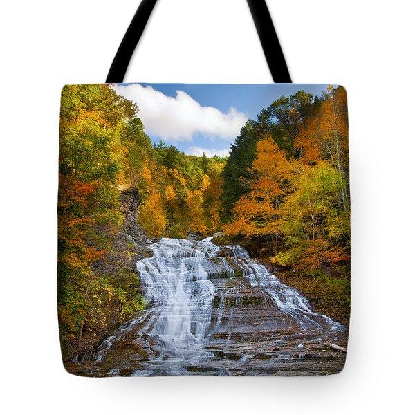 Buttermilk Falls 2 Tote Bag by Mark Papke