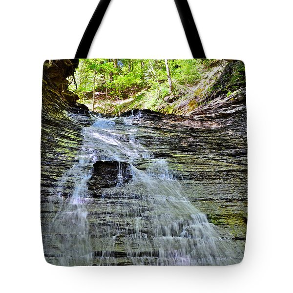 Butternut Falls Tote Bag by Frozen in Time Fine Art Photography