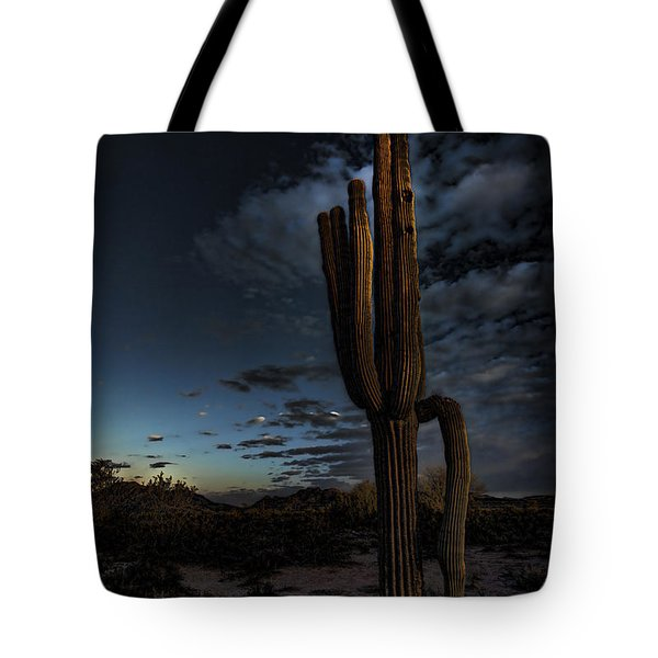 By The Light Of The Moon Tote Bag by Saija  Lehtonen