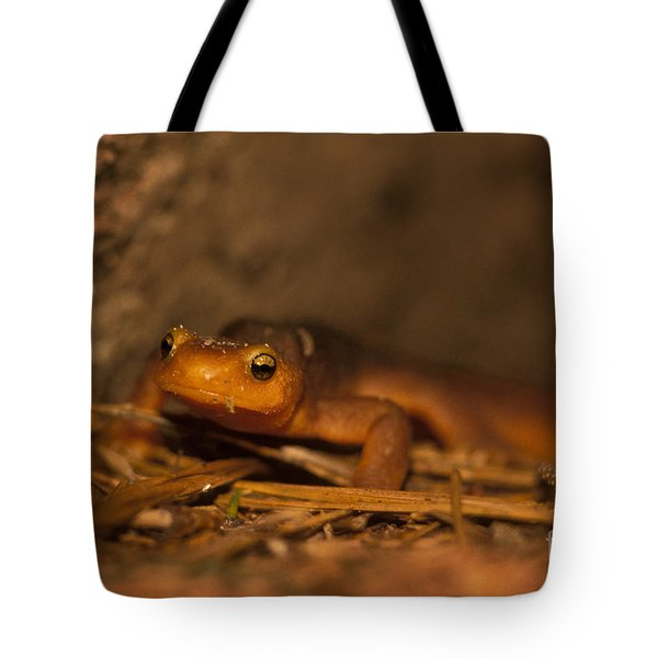 California Newt Tote Bag by Ron Sanford