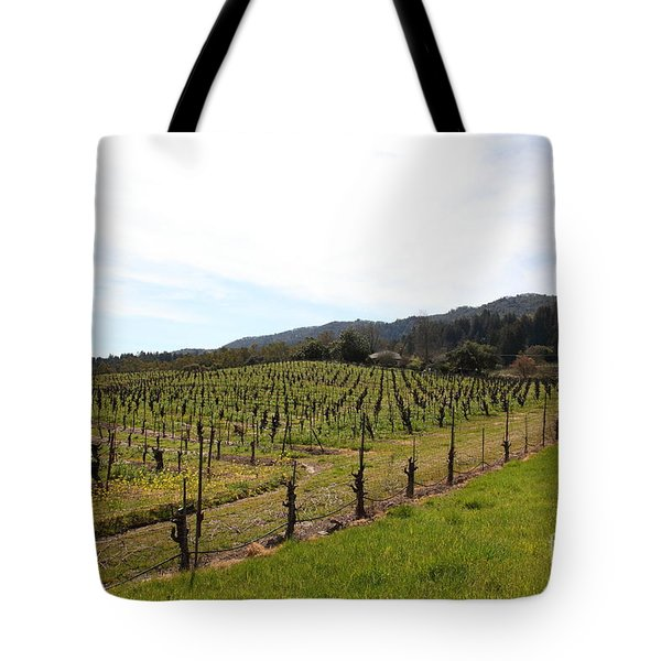 California Vineyards In Late Winter Just Before The Bloom 5D22114 Tote Bag by Wingsdomain Art and Photography