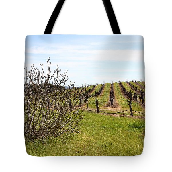 California Vineyards In Late Winter Just Before The Bloom 5d22121 Tote Bag by Wingsdomain Art and Photography